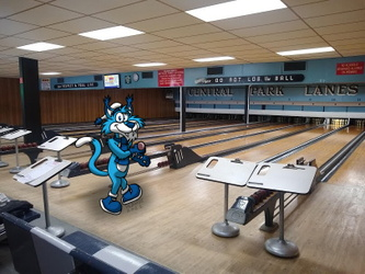 Candlepin Alley Cat