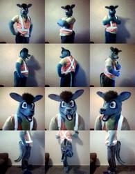 Groo suit V1.5
