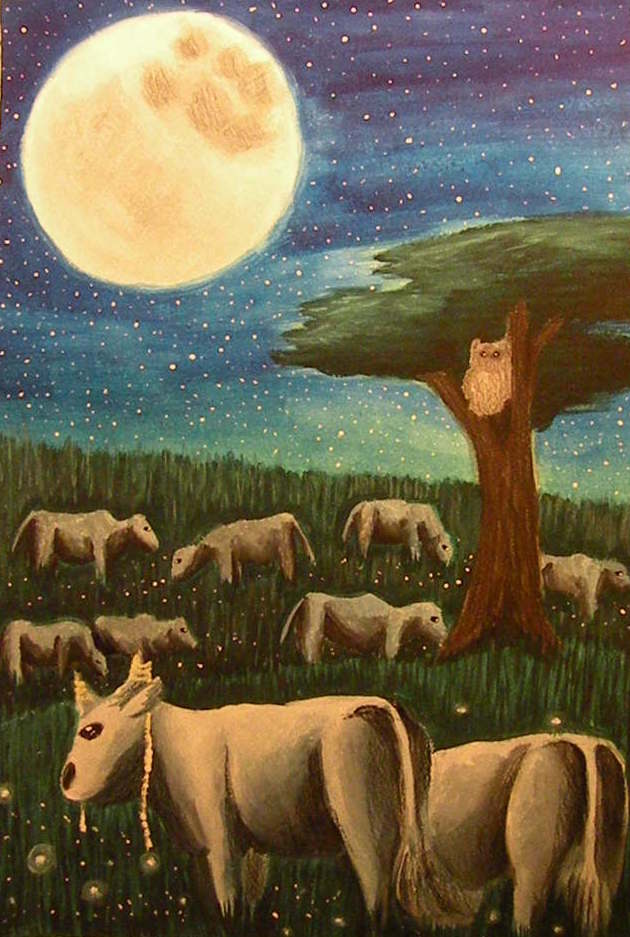 Most recent image: Star Grazing
