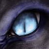 avatar of Zarizav