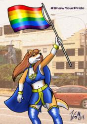 "Super Collie ""Show Your Pride"" (2)"