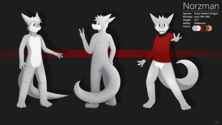 Norzman Reference Sheet