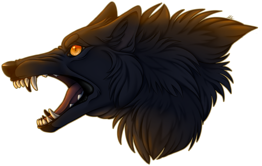 Most recent image: Angry Woof