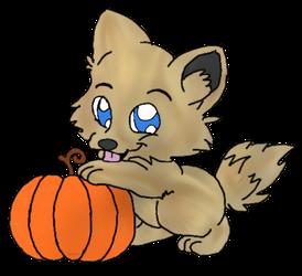 Panthera with Pumpkin