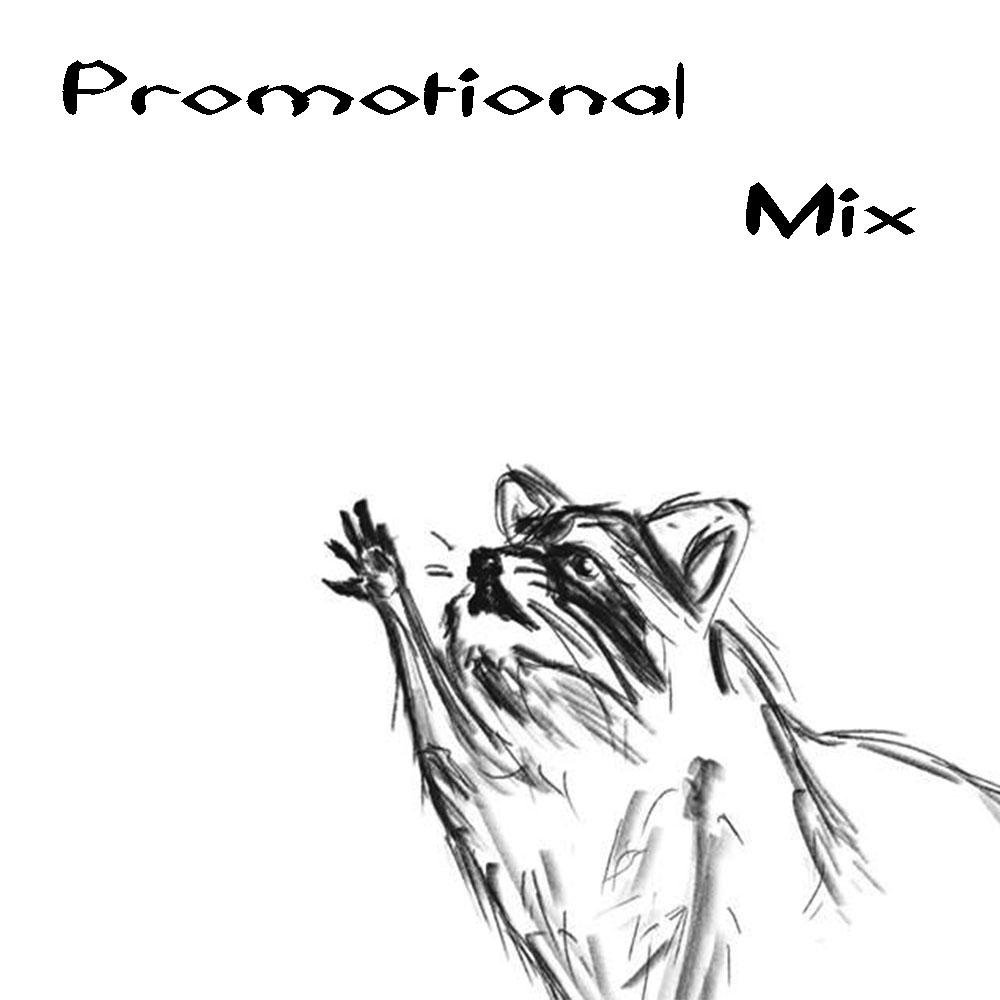 Most recent image: Raccoon Raccoon Promo Mix