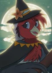 Spooky Bird Witch