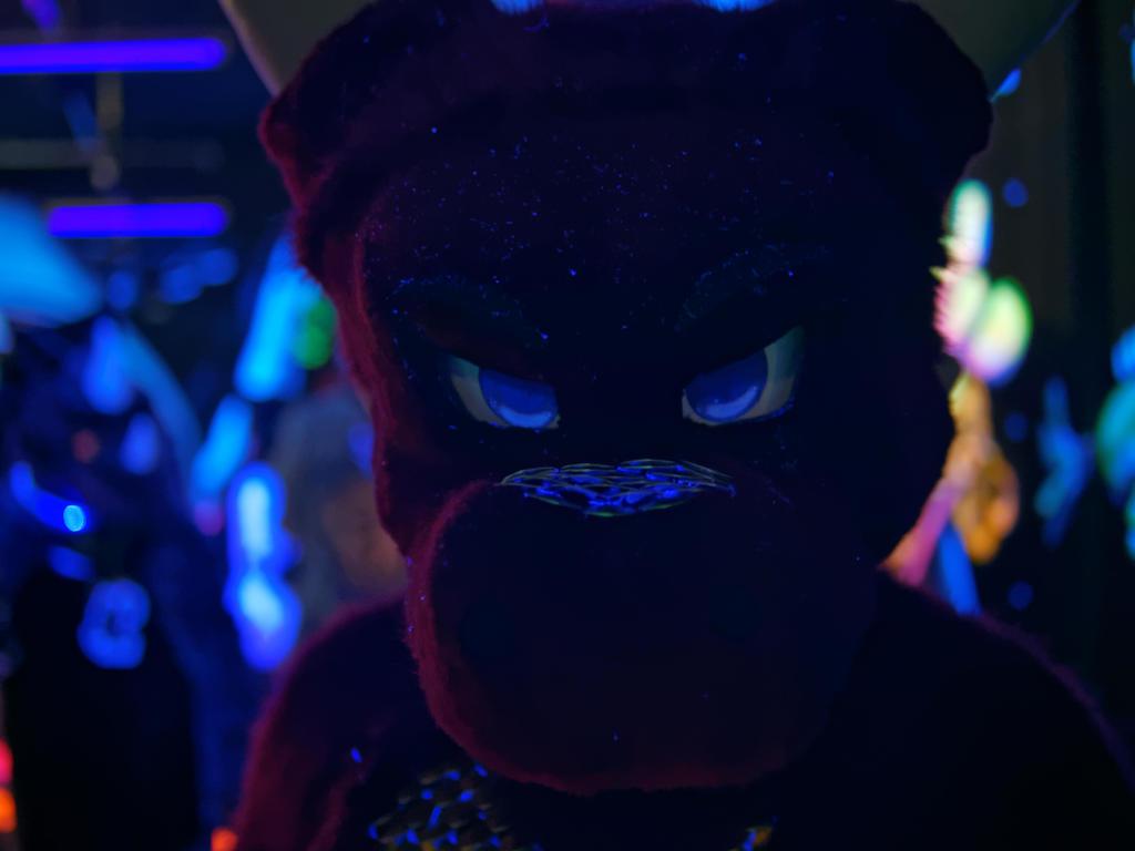 Fursuit Black Light 2015 : Saphiros