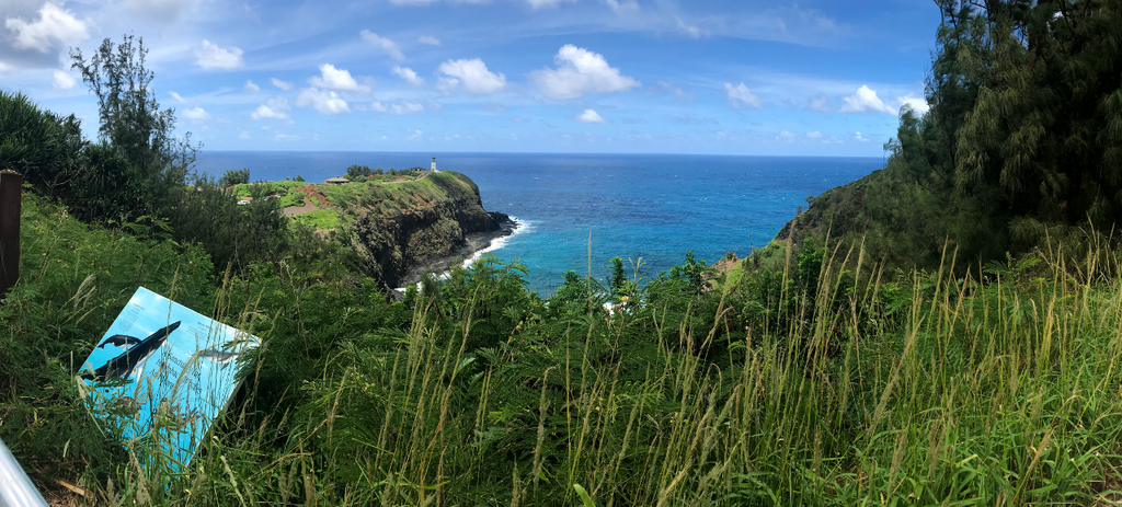 Kilauea Point panorama 1/2