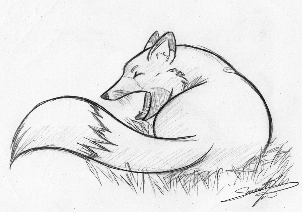 Big Yawn - Moogle - pencil sketch