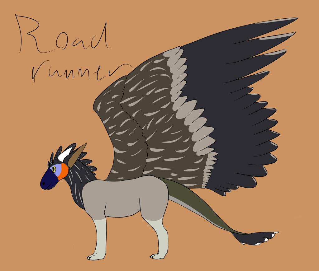 Most recent image: roadrunner themed dutch angel dragon adopt