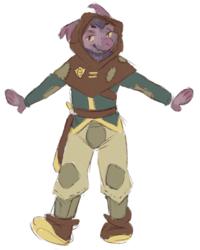 aardy's hero tunic