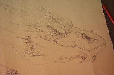 Smaug Portrait WIP