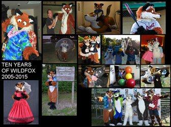 Ten Years of Wildfox