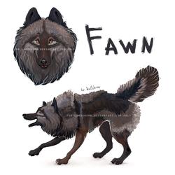 [COM] - Fawn ref