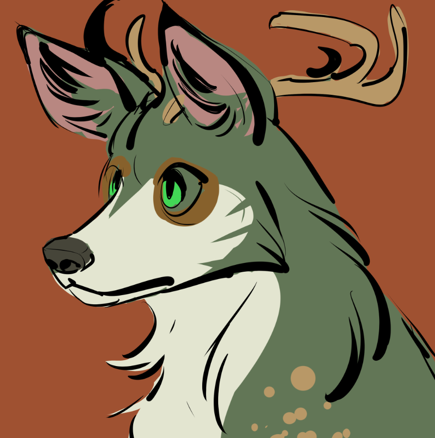 Most recent image: Antlers