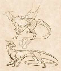 Dragon things