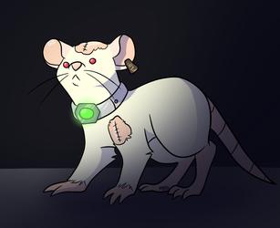 Digit rat