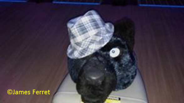 Most recent image: Delaware Fur-bruary Photo #4
