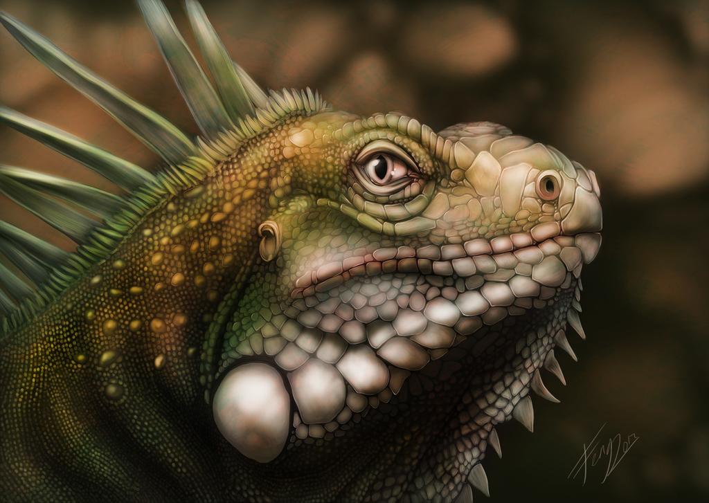 Scale Practice - Iguana