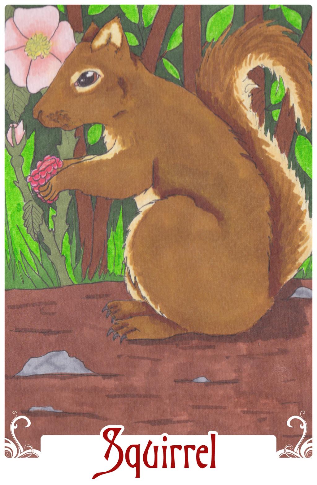 Squirrel (2014)