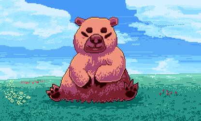 The comfiest bear