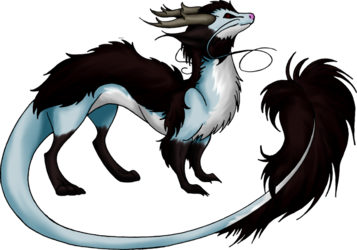 Ferret Dragon