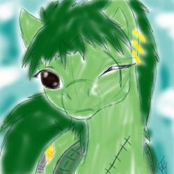 zoro pony (speed sketch)