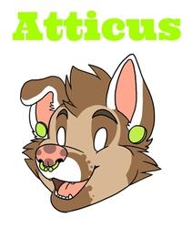 Atticus Doopy Badge