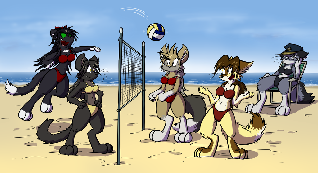 Obligatory Beach Volleyball Commission
