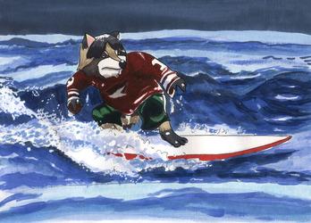 Surfing #9: Vogel