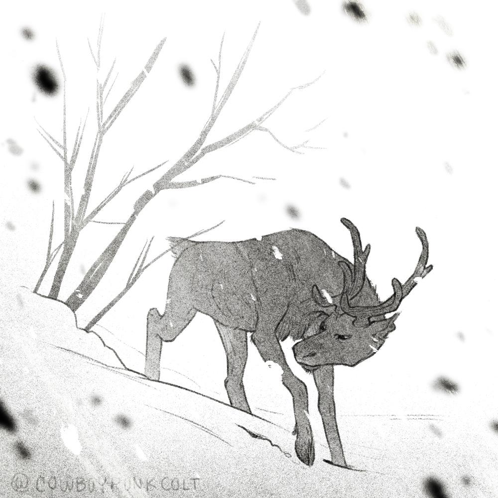 Reindeer Games Devon