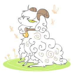 Fluffy Boy