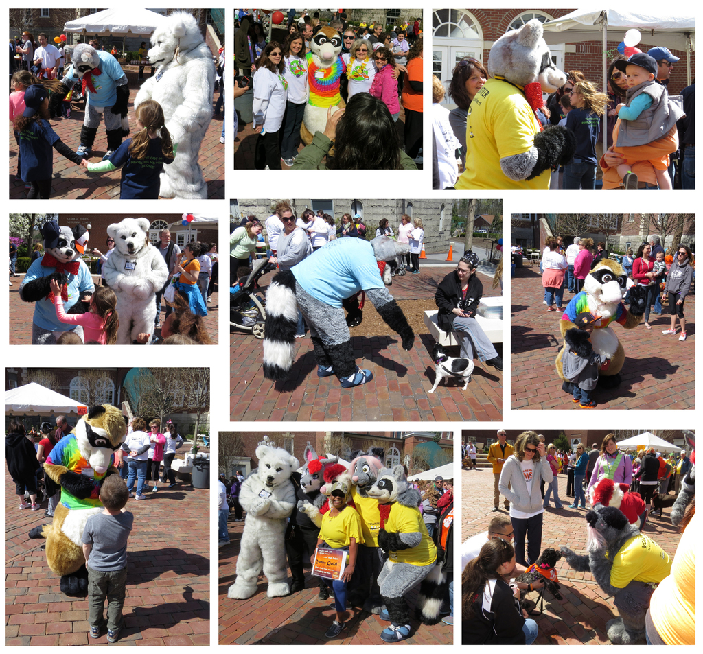 Hi-4 Walk for MS 2014 photo collage