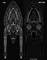 Tiger Class - Top and Bottom Views