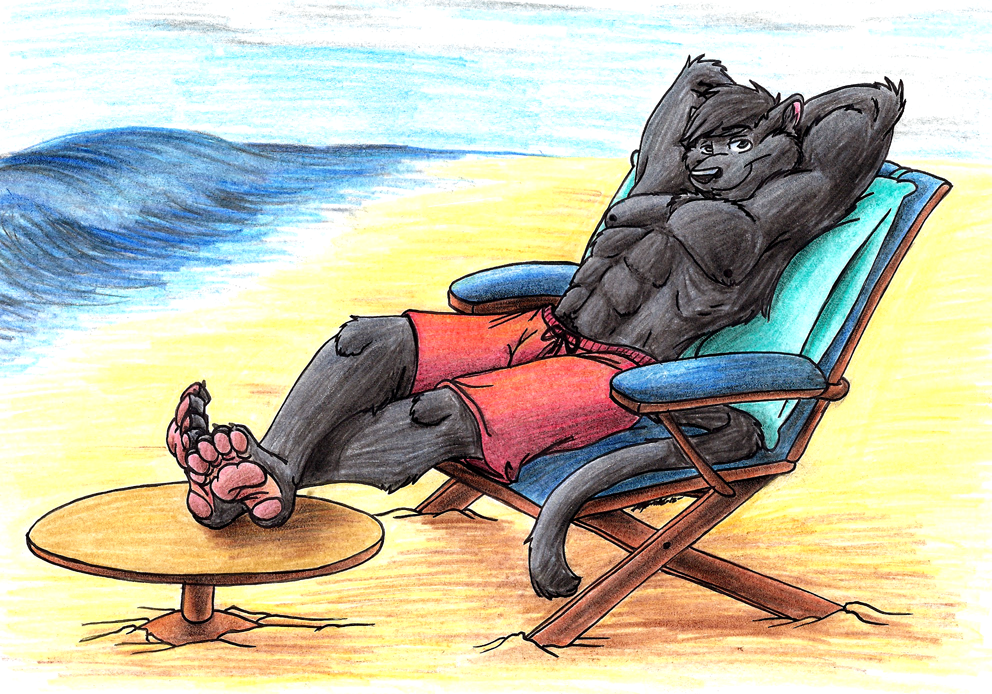 Most recent image: Relaxing on the beach