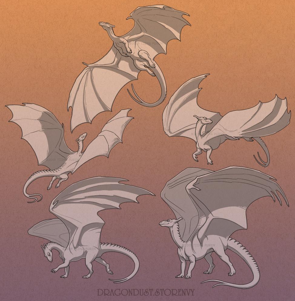 Adult Pern Dragons