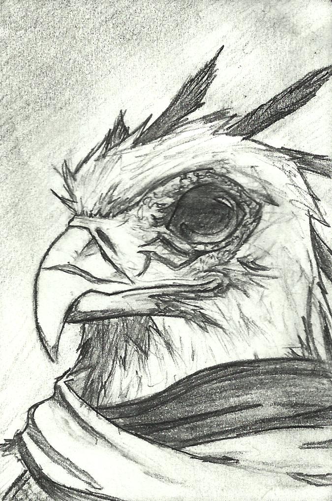 Secretarybird Adventurer