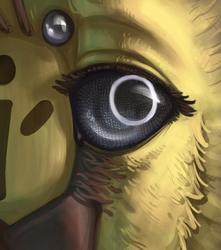 928928AR's Eye