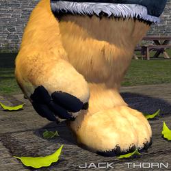 A show of fatty paws