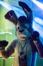FurDU 2017: Twilight 1