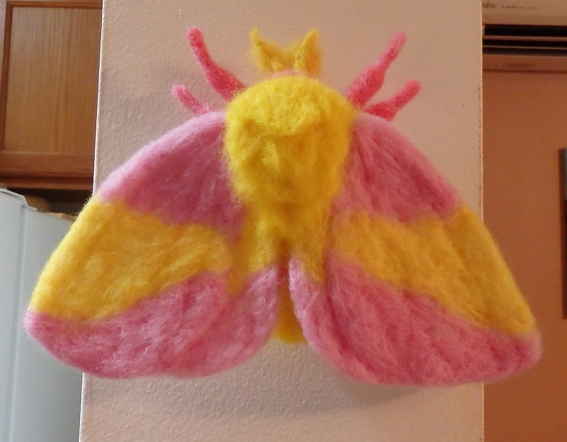 Rosy Maple Moth Needle Felted Wall Decor