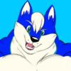 avatar of Jon_the_Husky