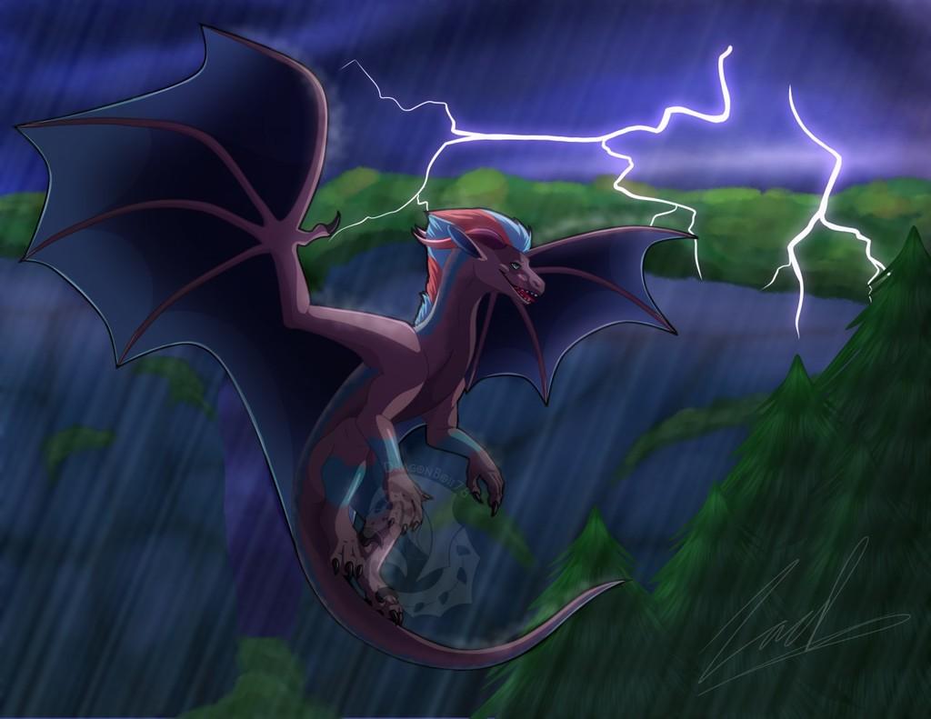 :COM: Fly Threw The Storm