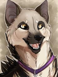 Aardwolf Icon