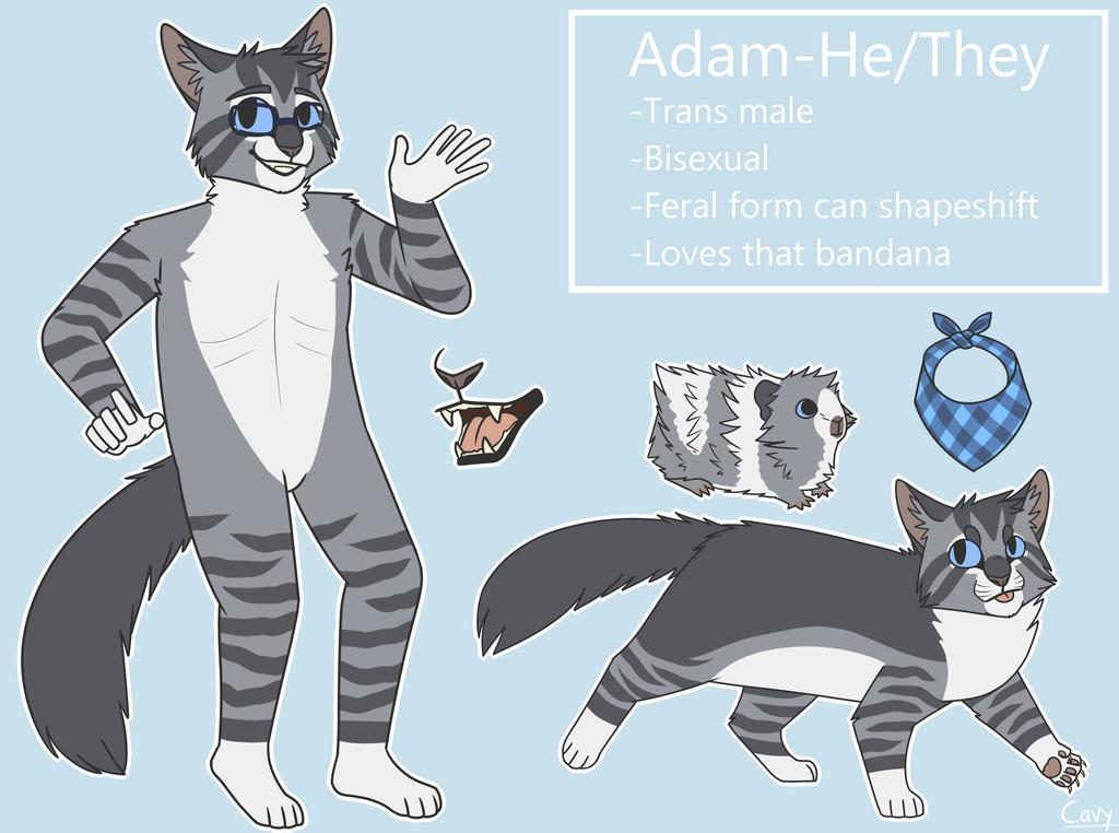 Adam Reference