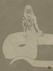 Maurus Sketch