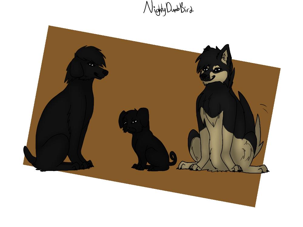 Three Doges