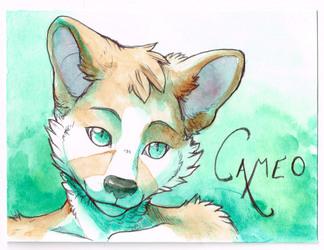 Cameo Badge by Hibbary