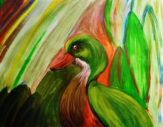 Pondish Pond Duck