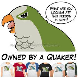 Owned by a quaker